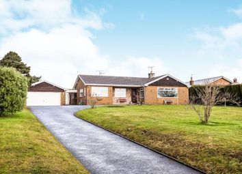 Thumbnail 3 bedroom bungalow for sale in Babell Road, Gorsedd, Holywell, Flintshire