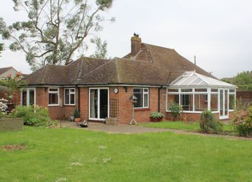 Thumbnail 3 bed detached bungalow to rent in Summers Road, Godalming