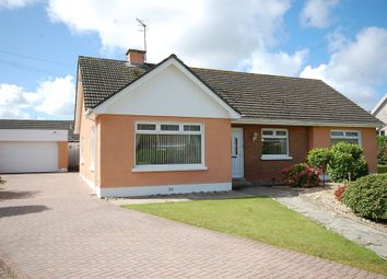 Thumbnail 3 bed detached bungalow for sale in Valley Road, Saundersfoot