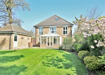 Thumbnail 5 bedroom detached house for sale in Acorn Lodge, Squirrel Walk, Wokingham, Berkshire