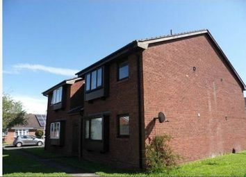 Thumbnail Studio to rent in Greylees Avenue, Hull