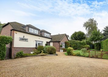 Thumbnail 4 bedroom detached bungalow for sale in The Avenue, Mortimer Common