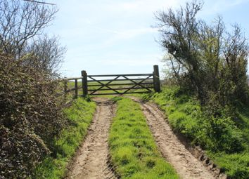 Thumbnail Land for sale in Roud, Ventnor