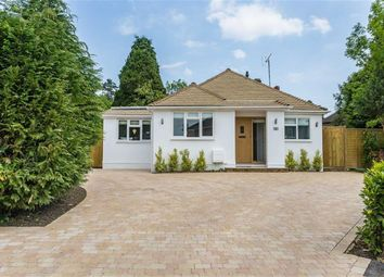 Thumbnail 3 bed bungalow for sale in Hurst Green Close, Hurst Green, Surrey
