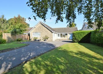 Thumbnail 3 bedroom detached bungalow for sale in Elm Hill, Motcombe, Shaftesbury
