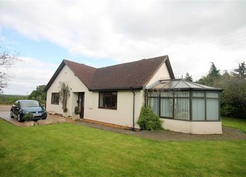 Thumbnail 3 bedroom detached bungalow for sale in Gorsley, Ross-On-Wye