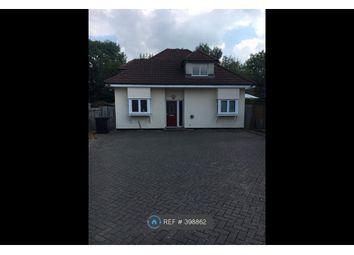 Thumbnail 4 bed detached house to rent in Holloways Lane, North Mymms, Hatfield