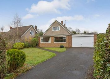 Thumbnail 3 bed bungalow for sale in Darras Road, Ponteland, Newcastle Upon Tyne, Northumberland