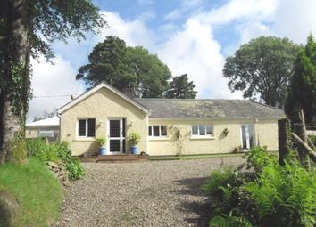 Thumbnail 4 bed detached bungalow for sale in Dihewyd, Lampeter
