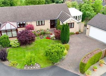 Thumbnail 2 bed semi-detached house for sale in Iveson Road, Highford Park, Hexham