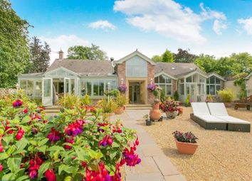 Thumbnail 4 bed bungalow for sale in North Rode, Congleton, Cheshire