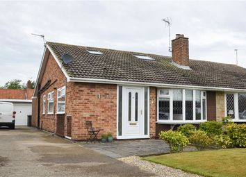 Thumbnail 4 bed semi-detached bungalow for sale in Beech Avenue, Bishopthorpe, York