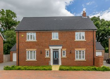 Thumbnail 4 bed detached house for sale in Ashcroft Close, Cringleford, Norwich