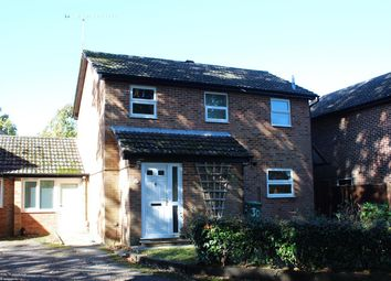 Thumbnail 4 bed detached house to rent in Hibiscus Grove, Bordon