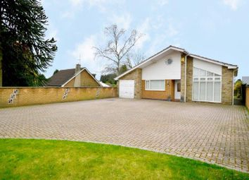 Thumbnail 5 bed detached bungalow for sale in Lime Grove, Forest Town, Mansfield