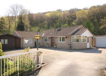 Thumbnail 3 bed bungalow for sale in Five Trees Avenue, Sheffield, South Yorkshire