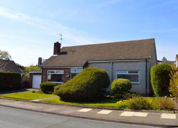 Thumbnail 3 bed detached bungalow to rent in South Rise, Cardiff