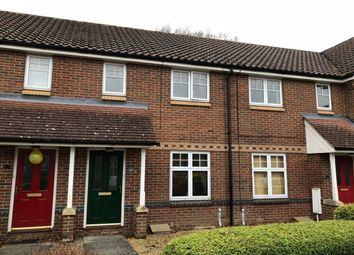 Thumbnail 2 bed terraced house to rent in Lodge Farm Drive, Old Catton, Norwich