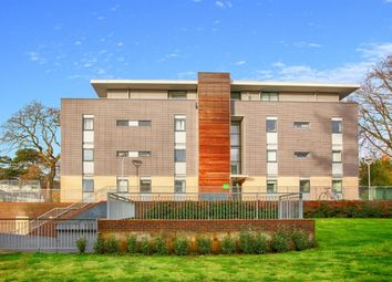 Thumbnail 2 bed flat to rent in Trinity Court, St Albans