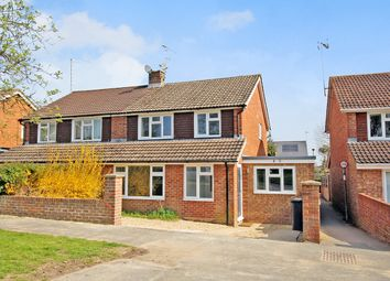 Thumbnail 4 bed semi-detached house for sale in Bolle Road, Alton, Hampshire