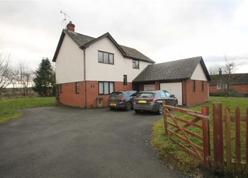 Thumbnail 4 bed detached house for sale in Llansantffraid