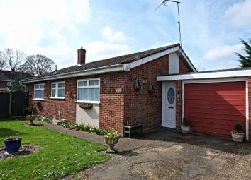 Thumbnail 3 bedroom detached bungalow for sale in Kings Road, Coltishall, Norwich