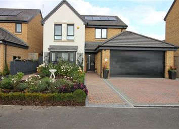 Thumbnail 4 bed detached house for sale in Rivelin Way, Waverley, Rotherham