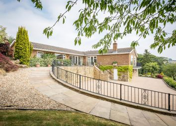 Thumbnail 4 bedroom detached bungalow for sale in The Hollow, Hazelwood, Derbyshire
