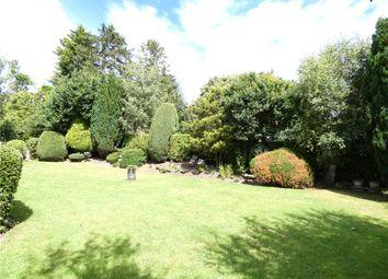 Walker Wood, Baildon, West Yorkshire BD17