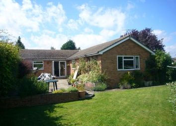 Thumbnail 4 bed detached bungalow to rent in Lower End, Piddington, Bicester