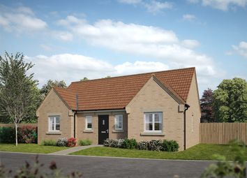 "Thumbnail 3 bedroom bungalow for sale in ""The Clement "" at The Saltings, Terrington St. Clement, King's Lynn"