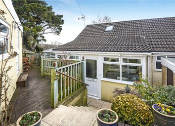 Thumbnail 2 bed semi-detached bungalow for sale in Springfield, Ilminster, Somerset