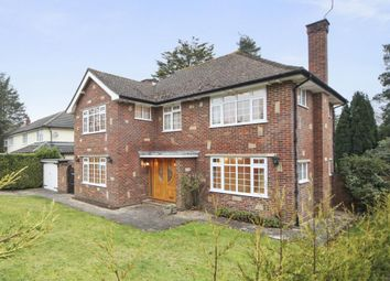 Thumbnail 4 bedroom detached house to rent in The Ridings, Cobham