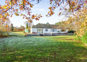 Thumbnail 4 bed detached bungalow for sale in Chavel, Ford, Shrewsbury, Shropshire