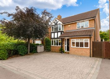 Thumbnail Detached house to rent in Kingfisher Close, Stanstead Abbotts, Ware