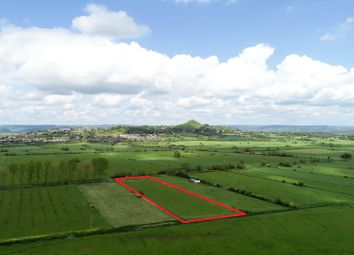 Thumbnail Land for sale in Street Drove, Somerset