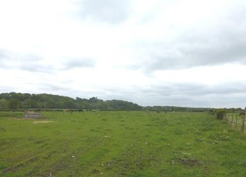 Thumbnail Land for sale in Southampton Road, East Mills, Fordingbridge