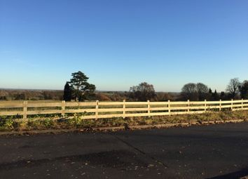 Thumbnail 2 bed bungalow for sale in The Avenue, Waresley, Nr Hartlebury