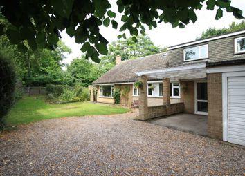 Thumbnail 5 bed detached bungalow for sale in Hawthorne Avenue, Borrowash, Derby