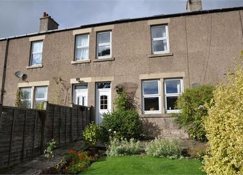 Thumbnail 4 bed terraced house to rent in Brigwood, Haydon Bridge, Northumberland.