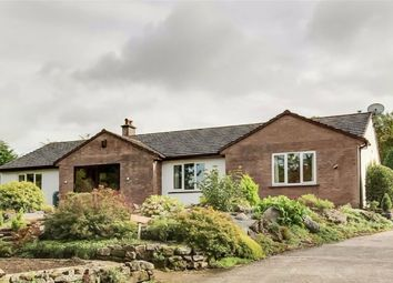 Thumbnail 4 bed detached bungalow for sale in The Ghyll, Threapland, Aspatria, Cumbria