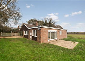 Thumbnail 4 bed bungalow to rent in Ockham Road North, Woking, Surrey
