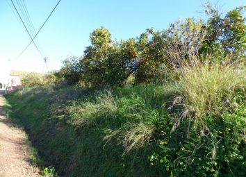 Thumbnail Land for sale in Silves, Algarve, Portugal