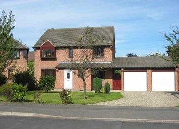 Thumbnail 4 bed property to rent in Oughton Close, Yarm