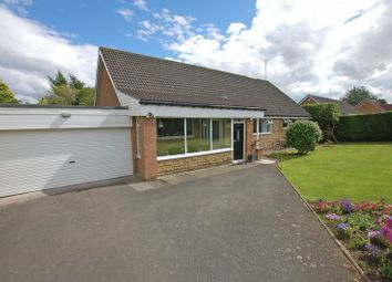 Thumbnail 4 bed bungalow for sale in Meadow Court, Ponteland, Newcastle Upon Tyne