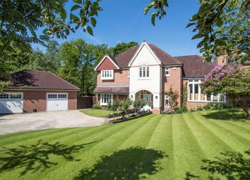 Thumbnail 4 bed detached house for sale in Ibworth Lane, Fleet
