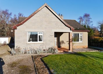 Thumbnail 3 bed bungalow for sale in Camore, Dornoch