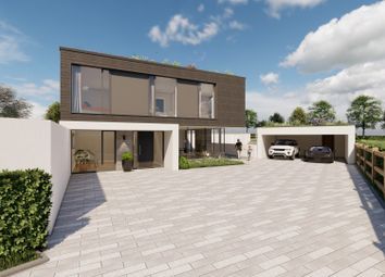 Thumbnail 5 bed detached house for sale in Wingate Lane, Long Sutton, Hook
