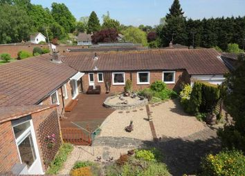 Thumbnail 3 bed detached bungalow for sale in Upper Mill, Wateringbury, Maidstone