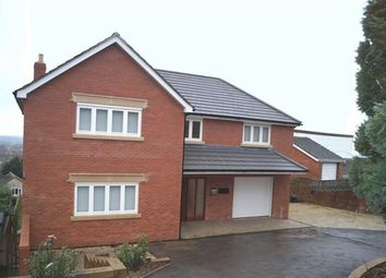 Thumbnail 6 bedroom detached house to rent in Leg Of Mutton Road, Glastonbury